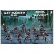 Warhammer 40.000: Dark Eldar - Hagashîn