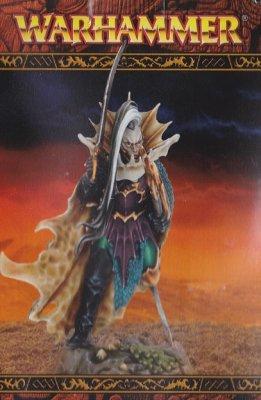 Warhammer Age Of Sigmar: Dark Elves - Schwarzer Flottenmeister