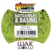 Battlefields & Basing - Spring Lichen