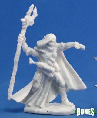 Dark Heaven Bones - Elequin, High Elf Adventurer