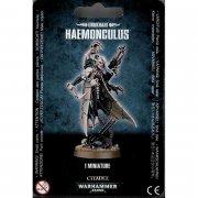 Warhammer 40.000: Drukhari (Dark Eldar) - Haemonculus