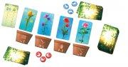 Blütenpracht (DE)