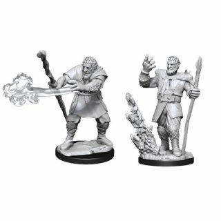 D&D Nolzurs Marvelous Miniatures: Firbolg Druid