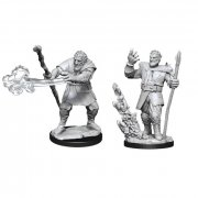 D&D Nolzurs Marvelous Miniatures: Firbolg Druid