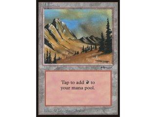 MTG - Mountain/Gebirge (ARN 077/078 NM EX)